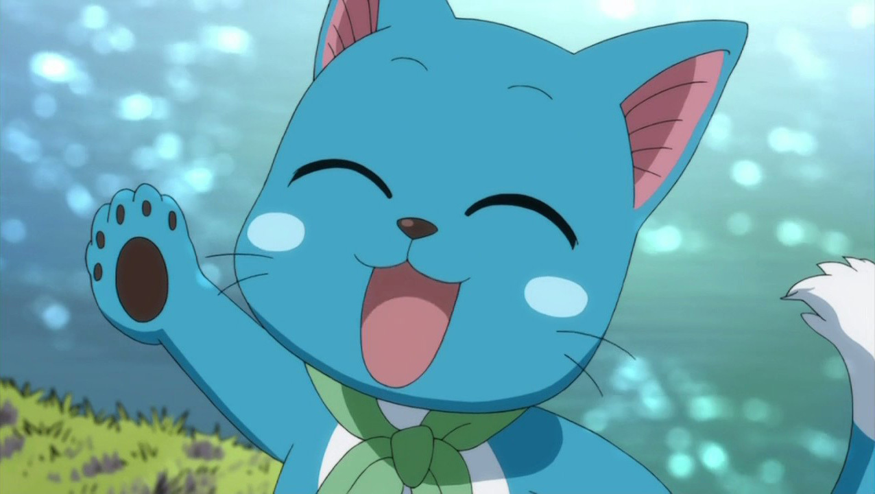 Fairy tail plue and happy