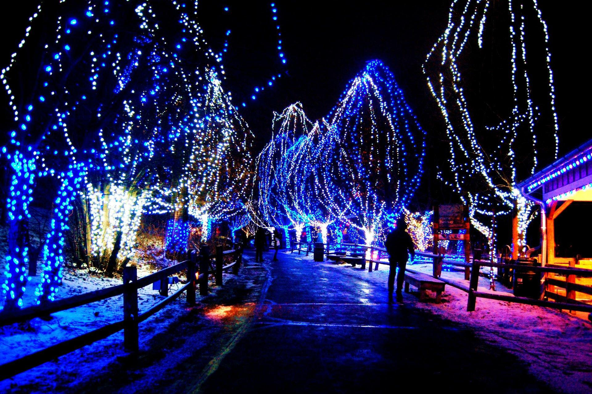 227 christmas lights hd