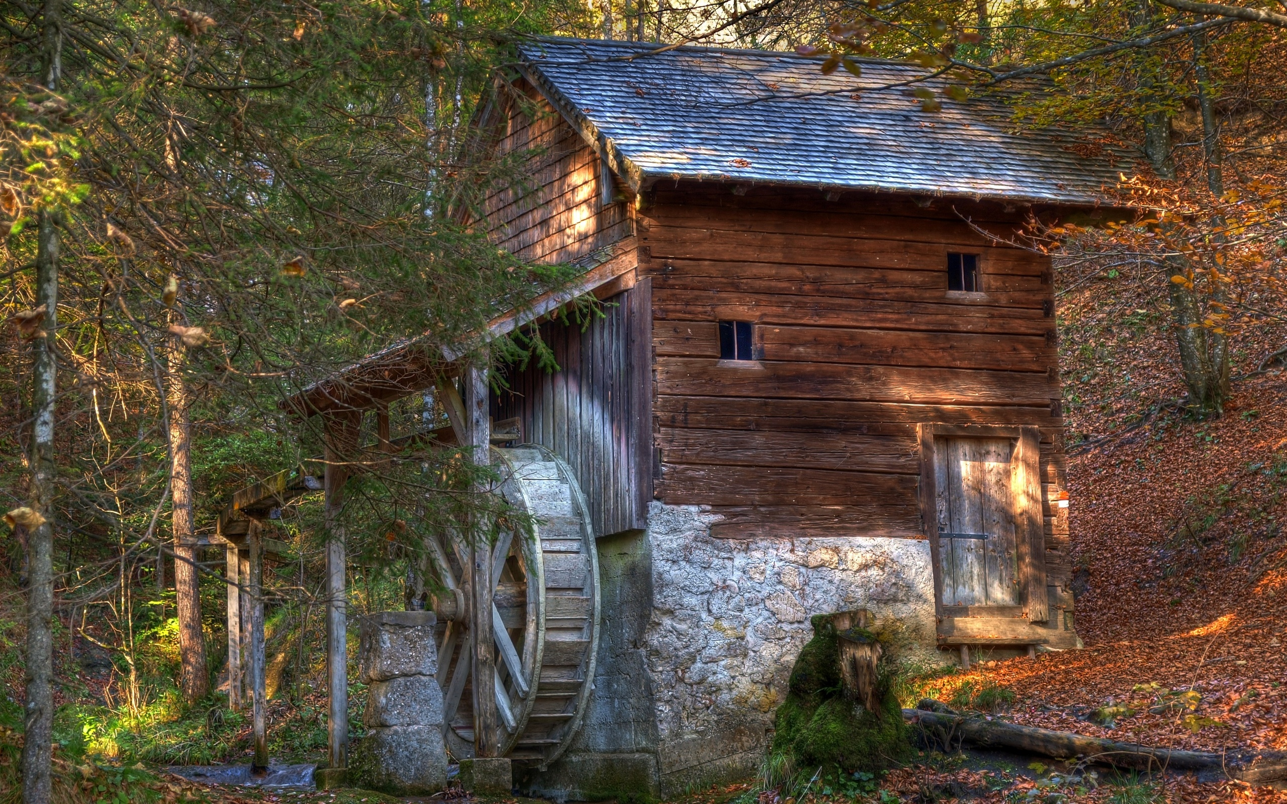Fall Trees Wallpaper Iphone Watermill Hd Wallpaper Background Image 2560x1600 Id