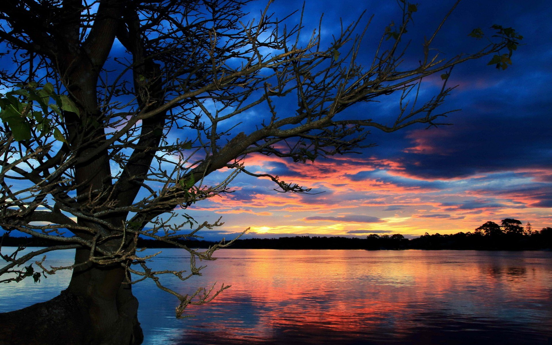 Sunset HD Wallpaper  Background Image  1920x1200  ID