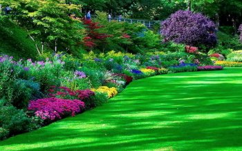 273 Garden Hd Wallpapers Background Images Wallpaper Abyss