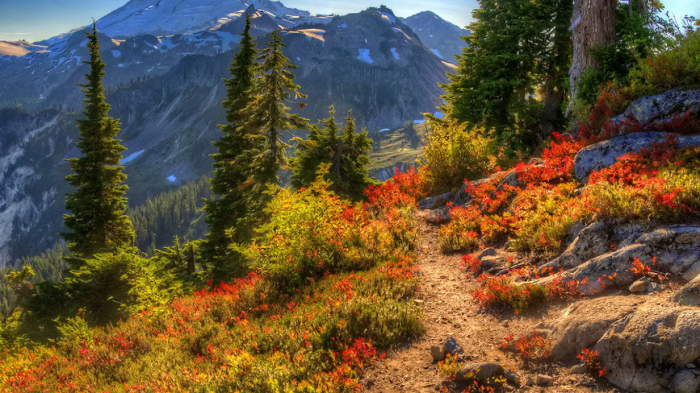 Bing Fall Wallpaper Mountain Path Wallpaper And Background Image 1366x768