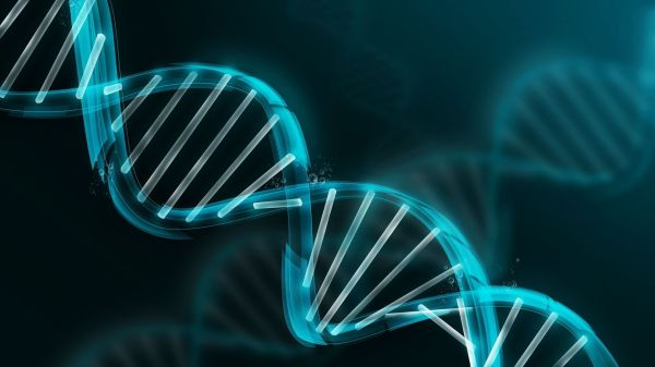 Dna Structure Full Hd And 1920x1080 Id 482896
