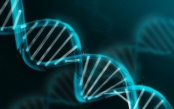 15 dna structure hd