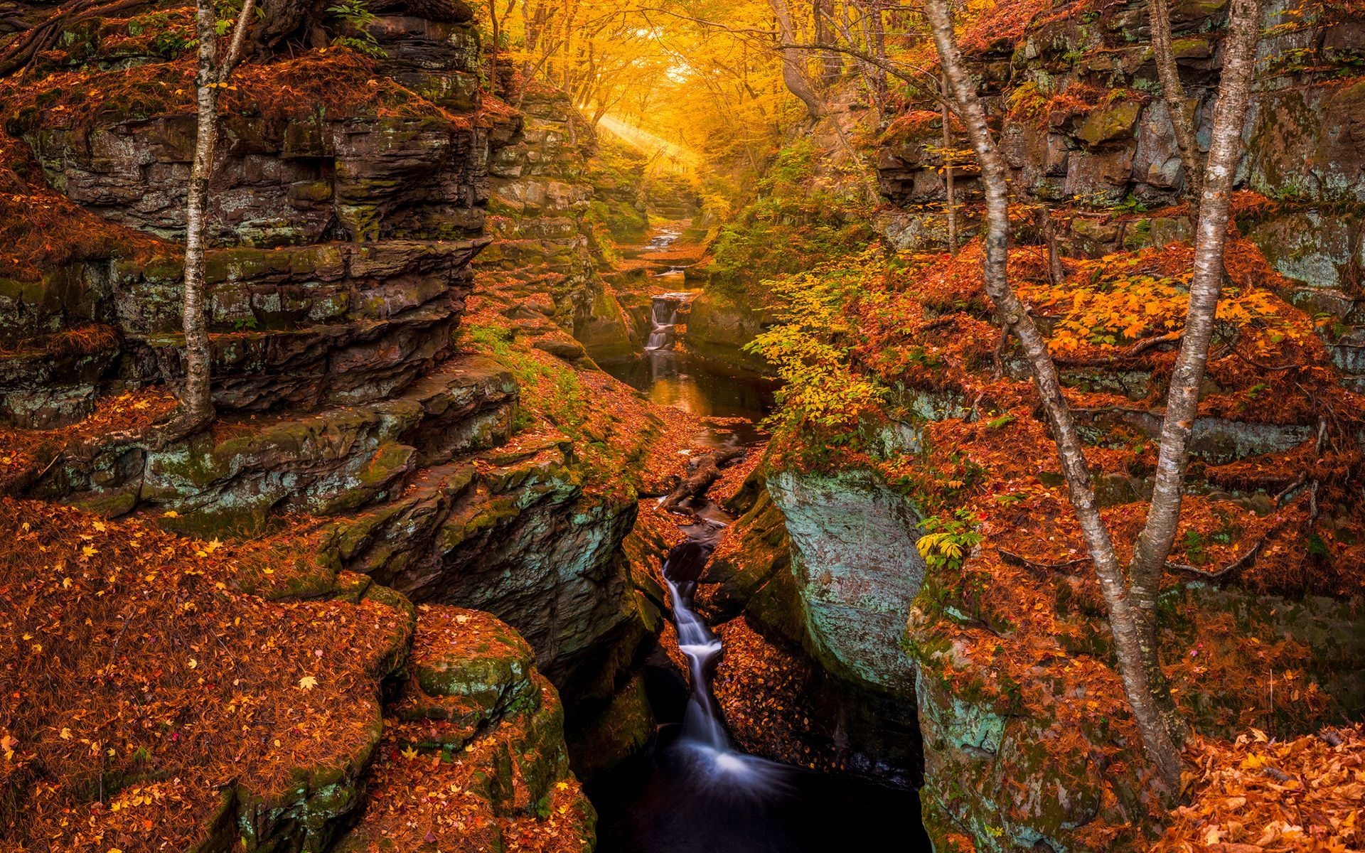 Hd Wallpaper Fall Leaf Change Stream And Waterfall In Rocky Autumn Forest Hd Wallpaper