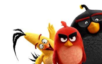 129 angry birds hd