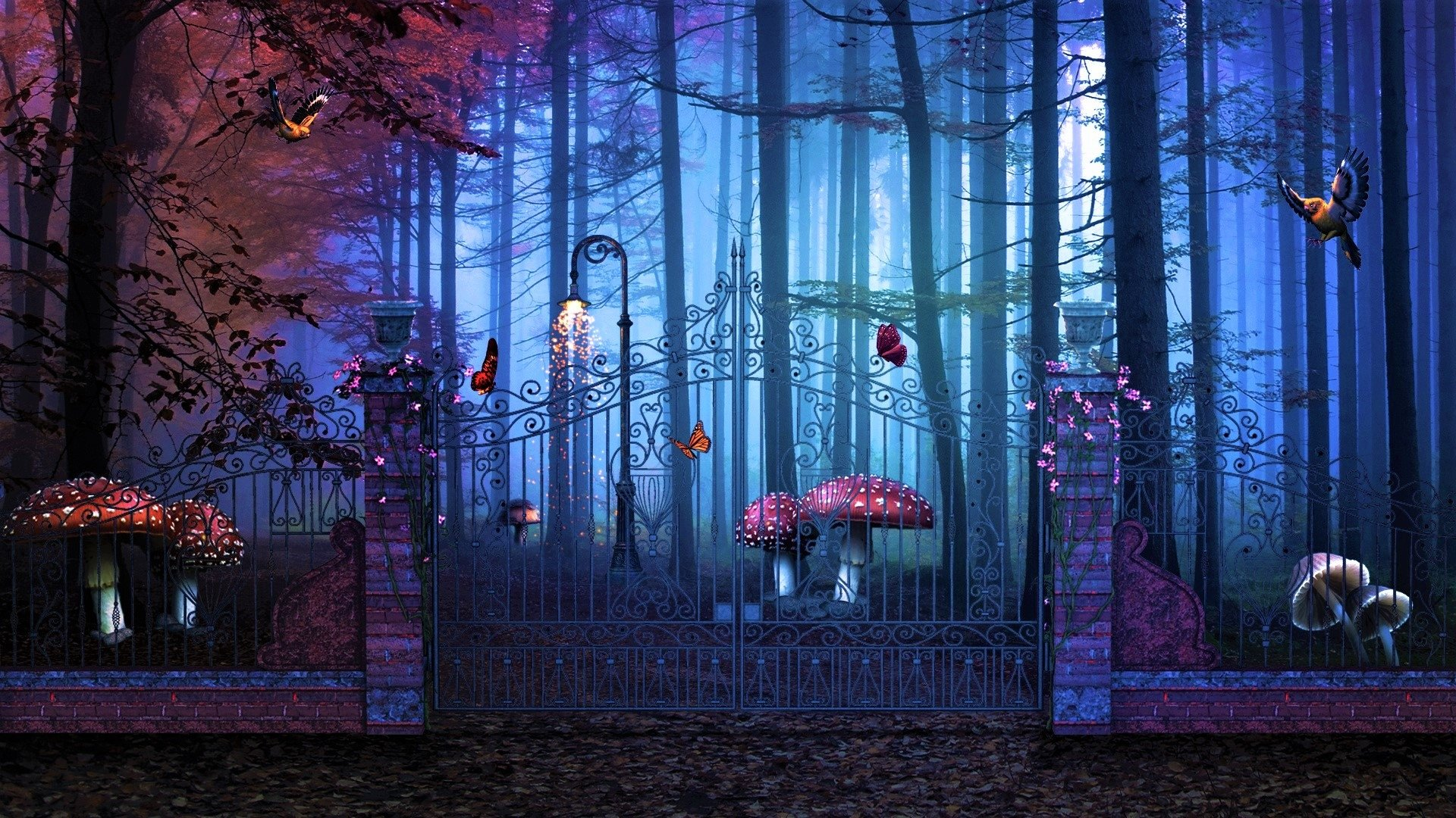 Fall Colors Mobile Wallpaper Gate To Enchanted Forest Hd Wallpaper Background Image