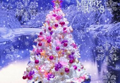 Table Top Christmas Tree With Lights