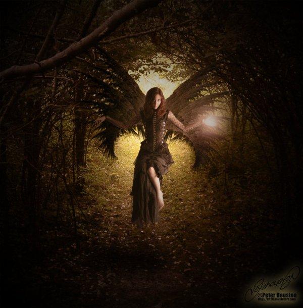 Gothic Fairy - 27974034 Fanpop