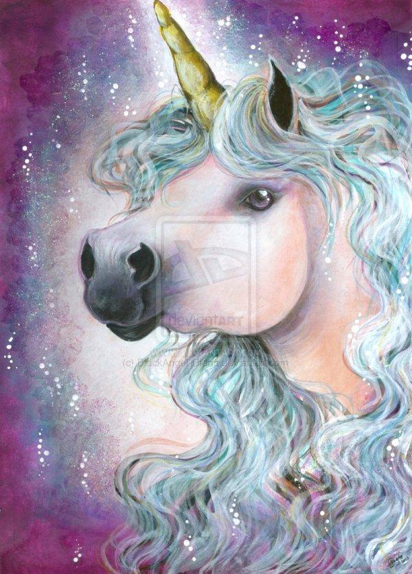 Unicorn Art Unicorns And Fanart