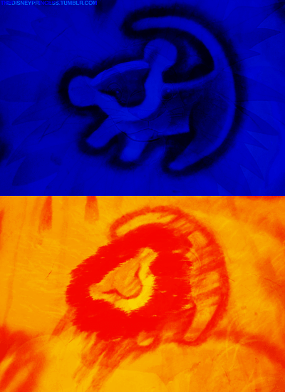 King Falls Am Wallpaper Simba Disney Photo 31392338 Fanpop