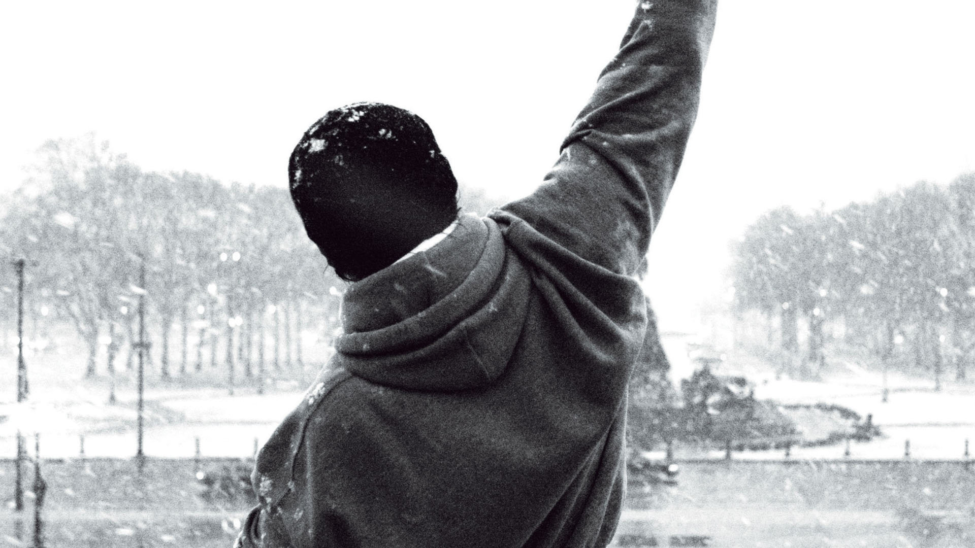 7 Rocky Balboa Wallpapers HD  Wallpaper Abyss