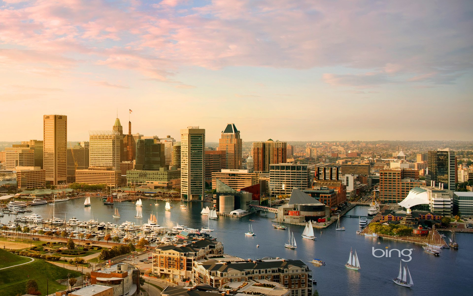 Baltimore HD Wallpaper  Background Image  1920x1200  ID