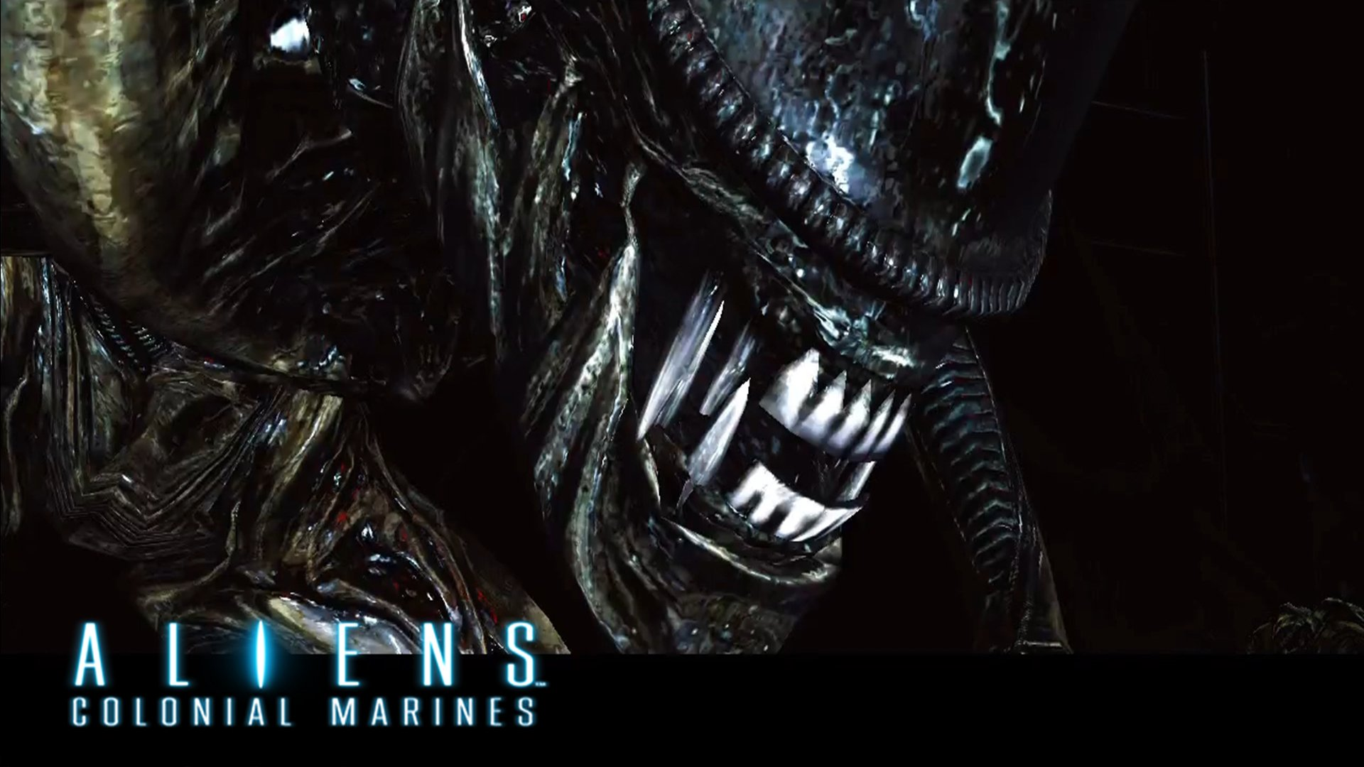 The Great Wall Movie Wallpaper Hd Aliens Colonial Marines Full Hd Wallpaper And Background