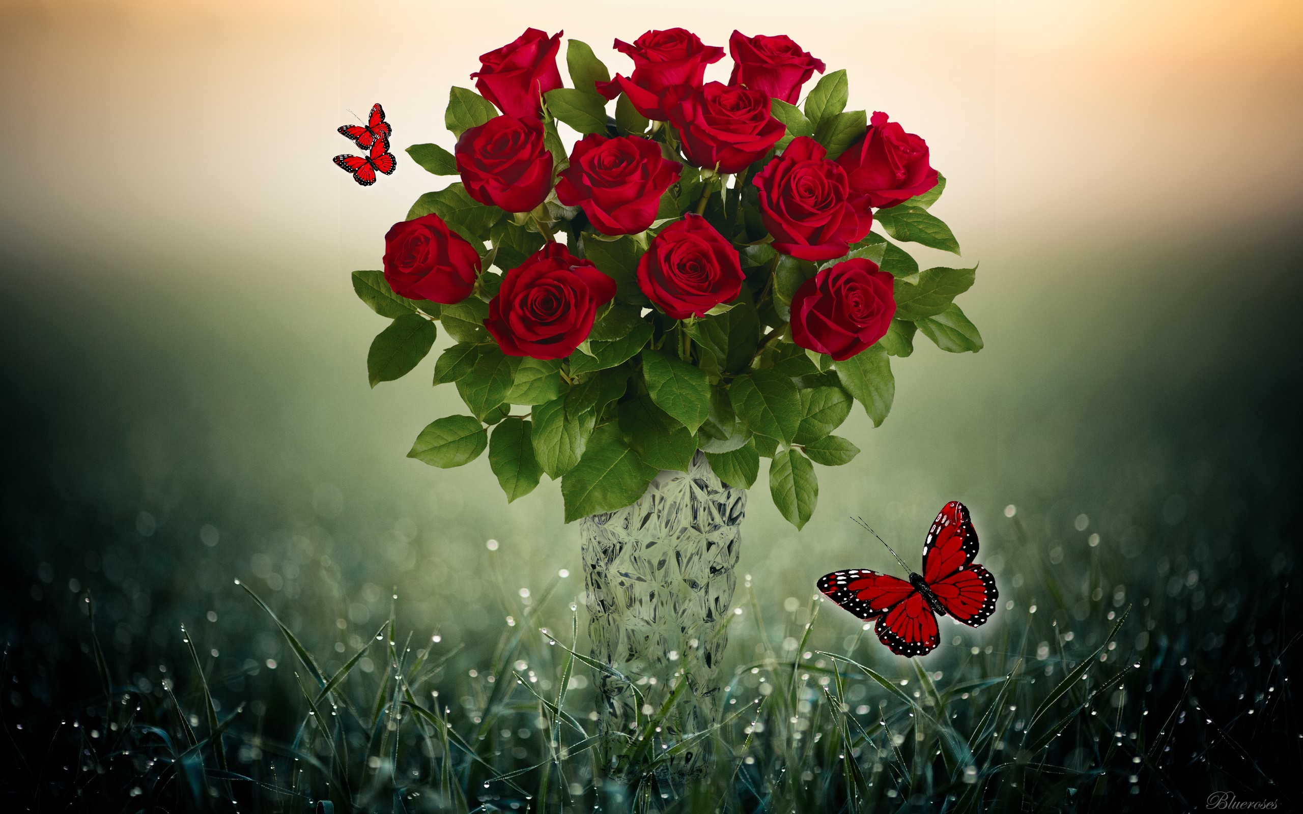 Butterfly With Rose Wallpaper - Art Wallpapers