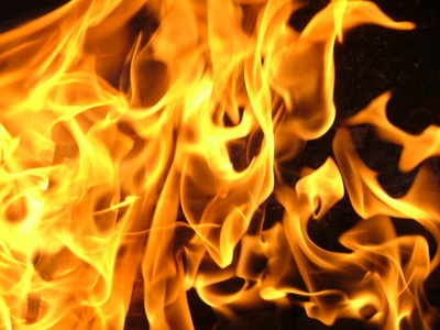 Image result for love fire