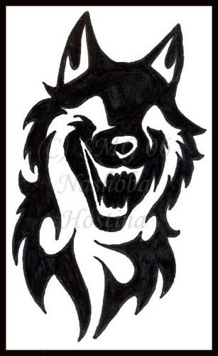 Jet The Lobo In Real Life Alpha Y Omega Foto 32206705 Fanpop