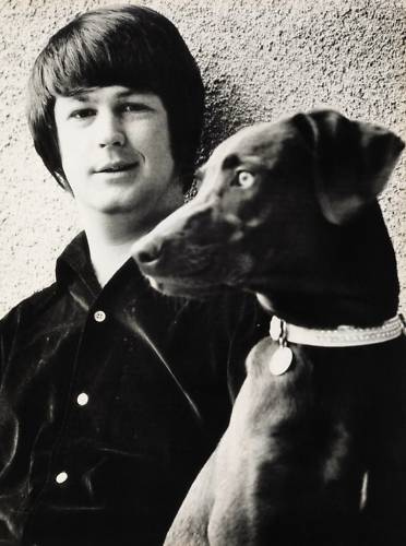 Image result for brian wilson images
