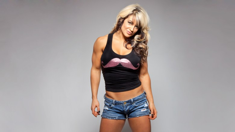 WWE Divas images Kaitlyn HD wallpaper and background photos (32793011)