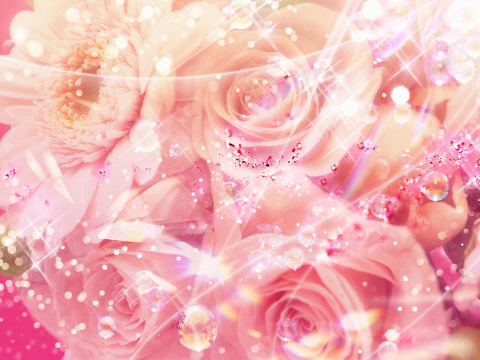 pretty pink rose wallpaper