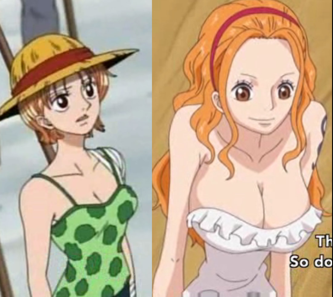 https://i0.wp.com/images6.fanpop.com/image/photos/35300000/Nami-w-one-piece-35335929-1100-980.jpg