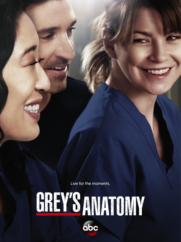 Grey's Anatomy Saison 10 : grey's, anatomy, saison, Season, Poster, Grey's, Anatomy, Photo, (37540239), Fanpop