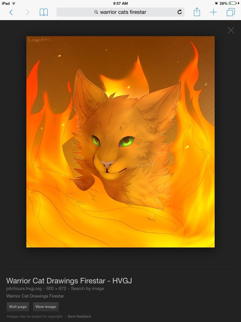 Warrior Cats Wallpaper Firestar And Sandstorm