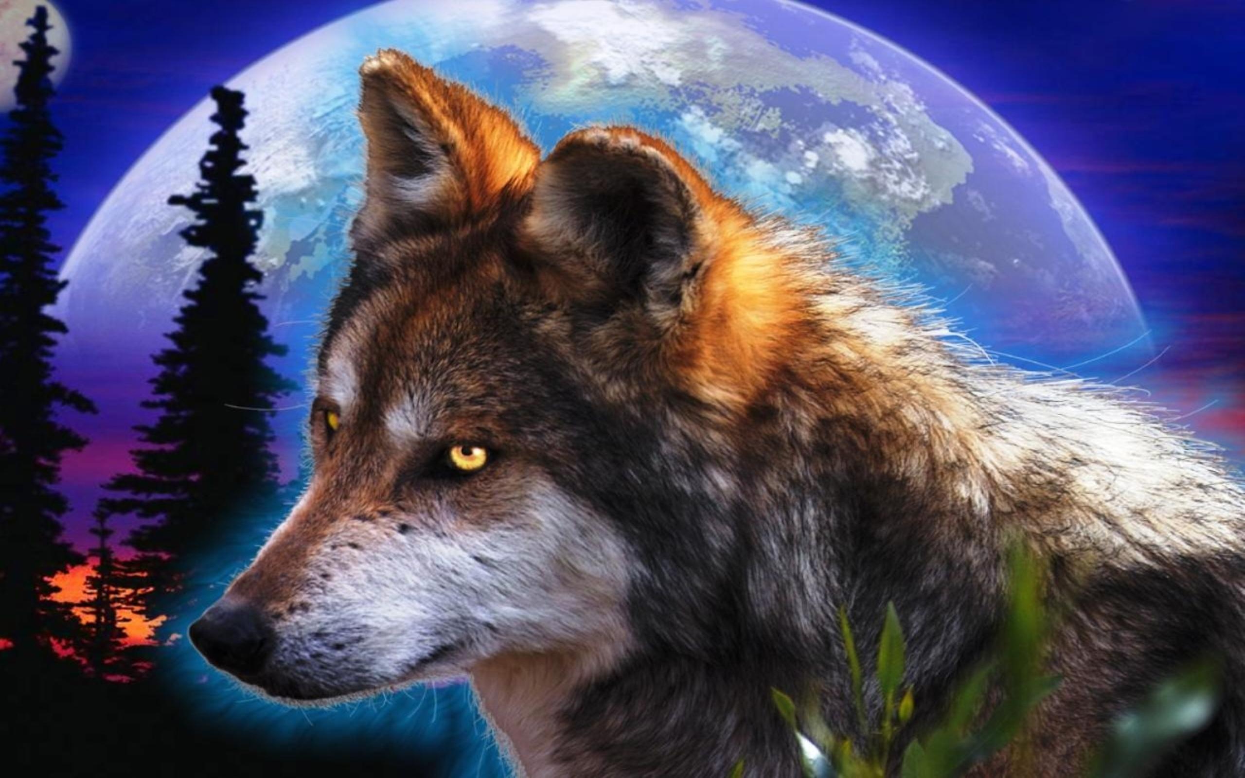loups loups fond d ecran 38872370 fanpop