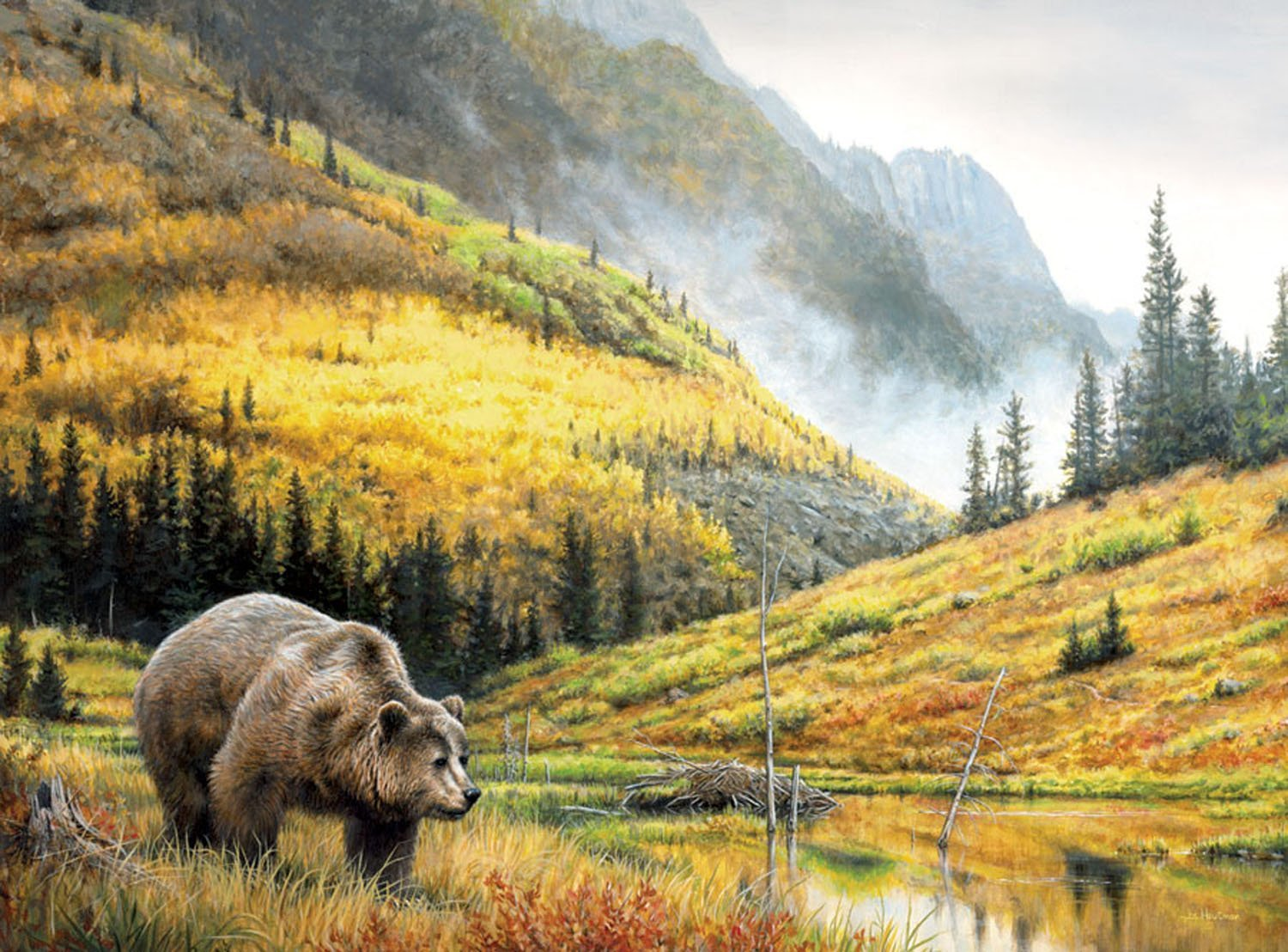 jigsaw puzzles images grizzly