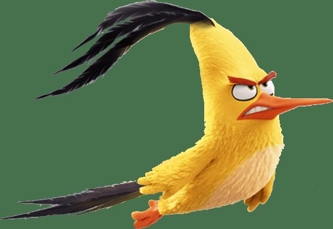 Chuck - The Angry Birds Movie Photo (40832172) - Fanpop