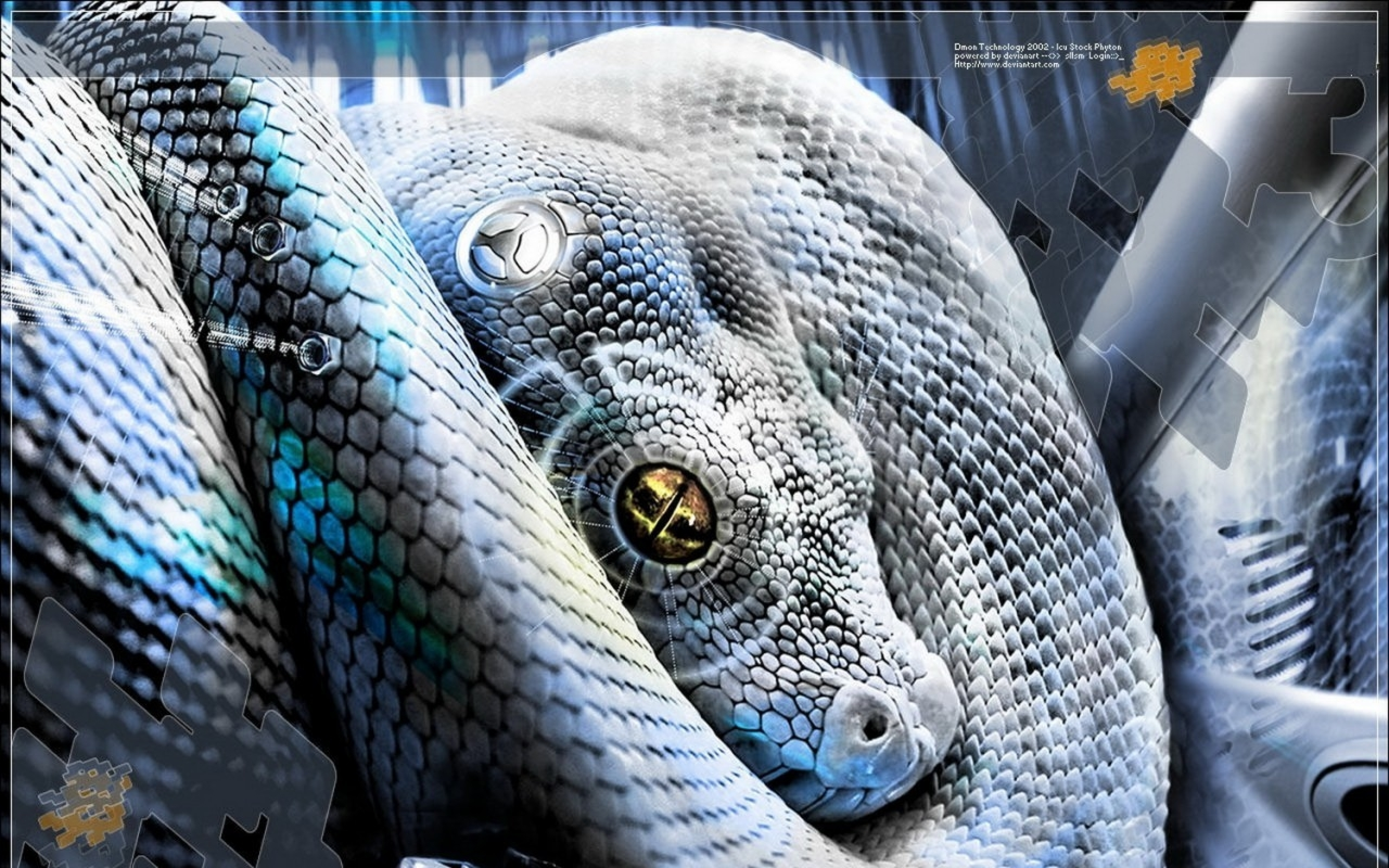 snake hd wallpaper | background image | 2560x1600 | id:373765