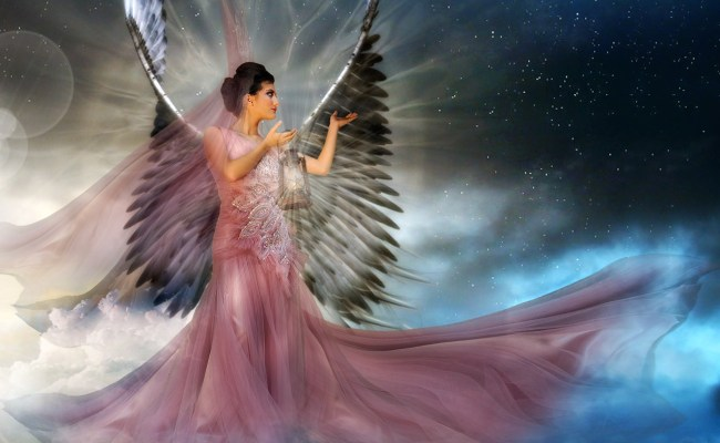 Angel Hd Wallpaper Background Image 3196x1957 Id