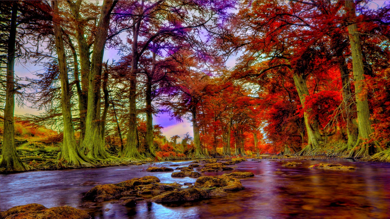 Fall Color Wallpaper Widescreen Guadalupe River Texas Wallpaper And Background Image