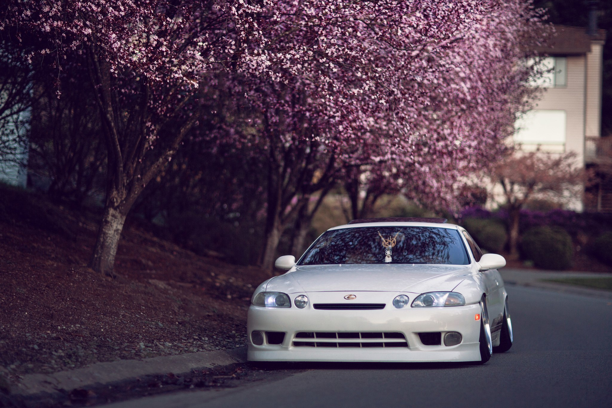 Alpha Coders Car Wallpapers Lexus Hd Wallpaper Background Image 2048x1365 Id