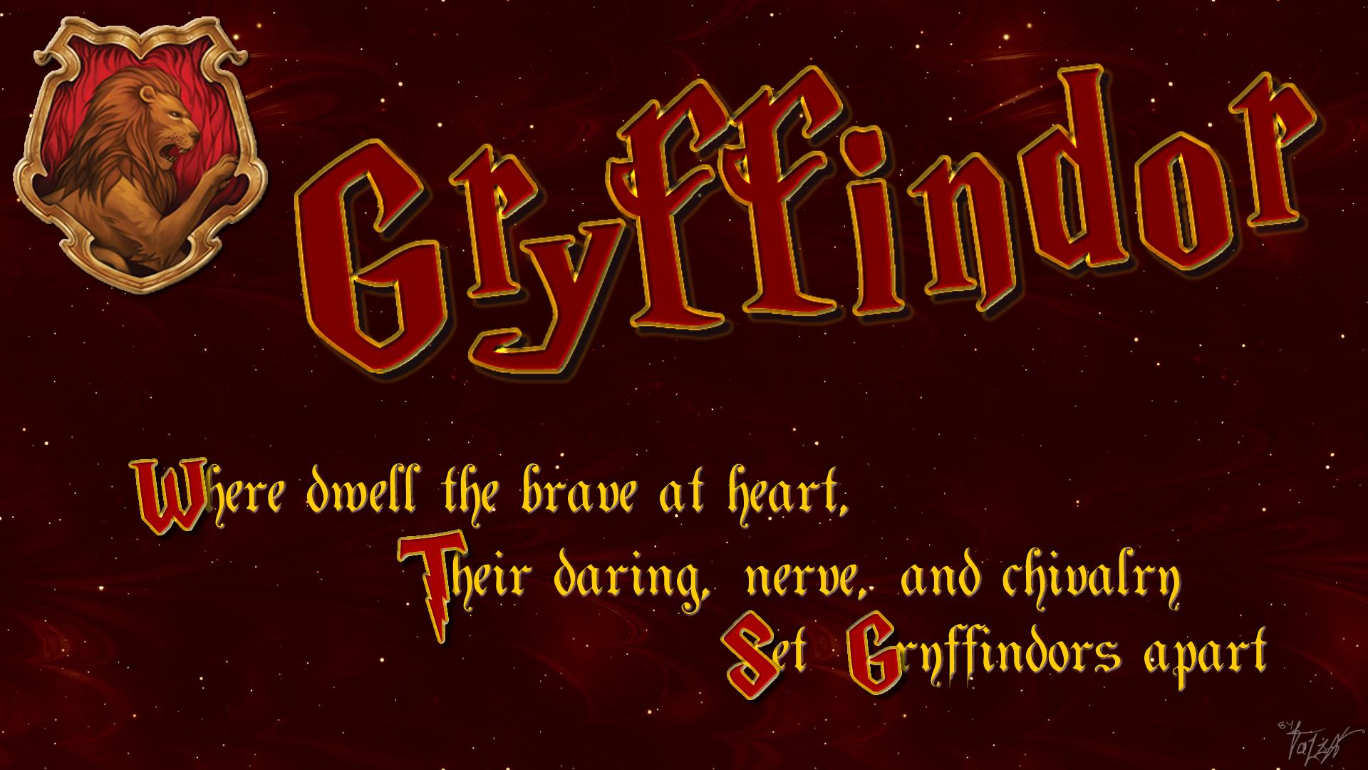 Harry Potter 高清壁紙   桌面背景   1920x1080   ID:556239 - Wallpaper Abyss