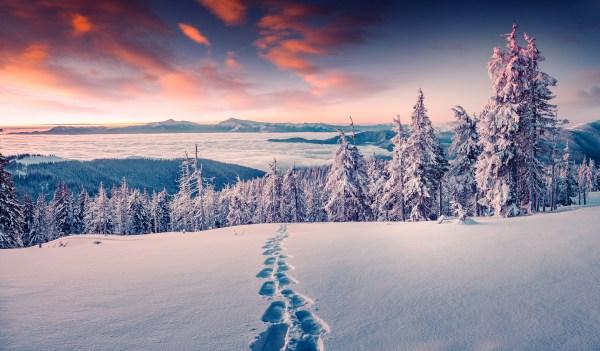 footprints in snow hd wallpaper