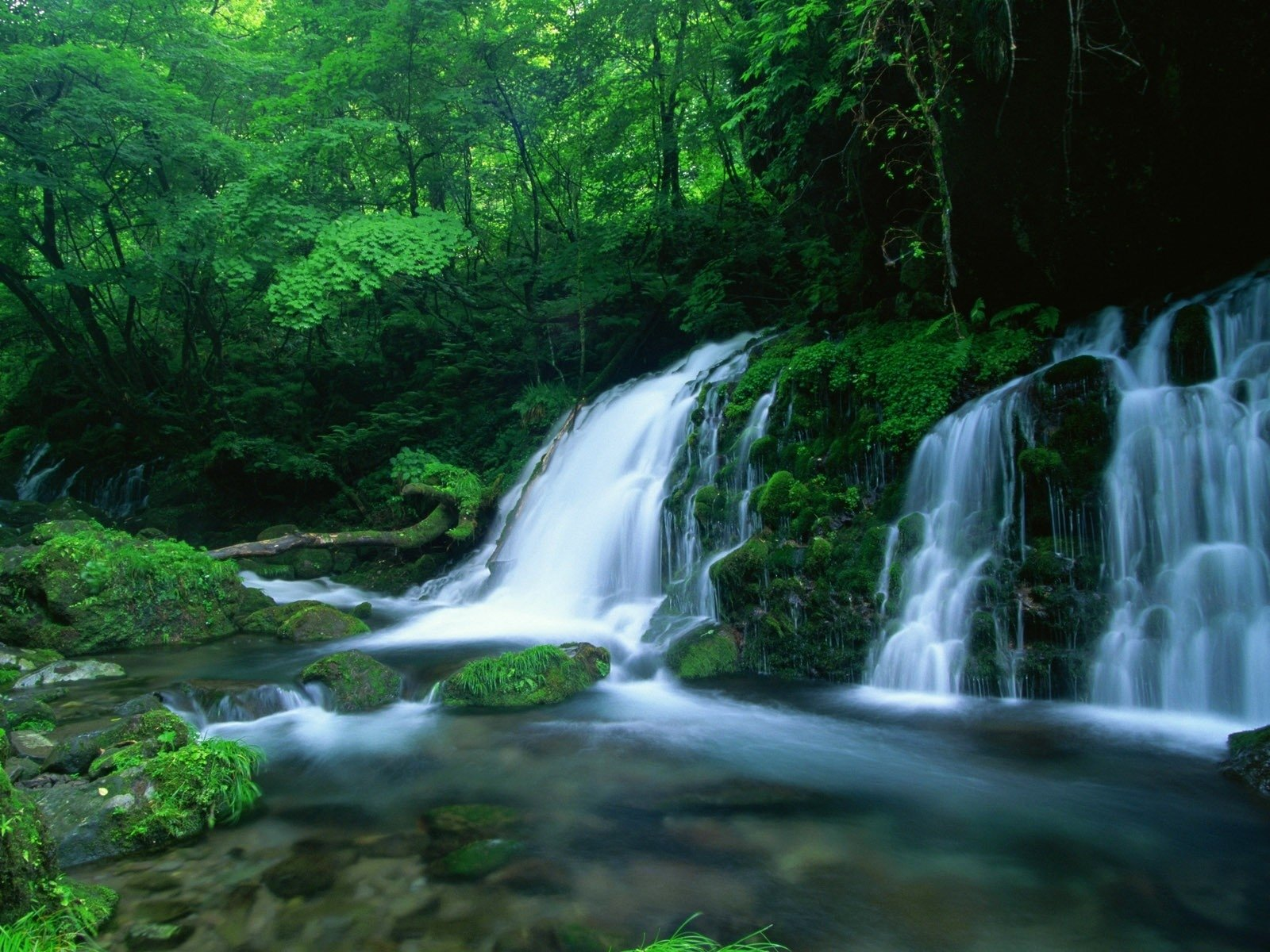 Cool Fall Desktop Wallpaper Green Forest Waterfall Wallpaper And Background Image