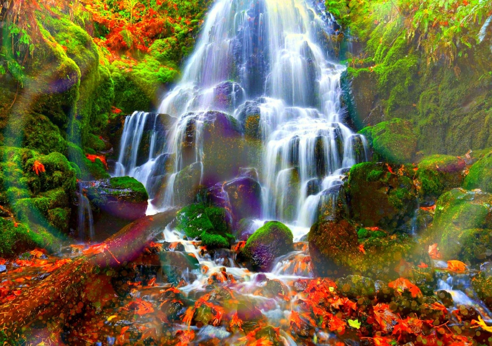 Fall Wallpaper For Large Monitors Autumn Forest Water Cascades Hd Wallpaper Background