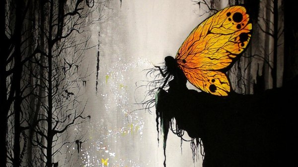 Butterfly Fantasy Girl Full Hd Wallpaper And Background 1920x1080 Id 702010