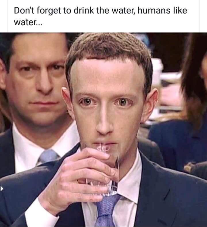The best zuckerberg memes  Memedroid