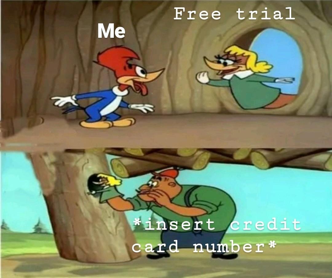 The Best Memes Memedroid