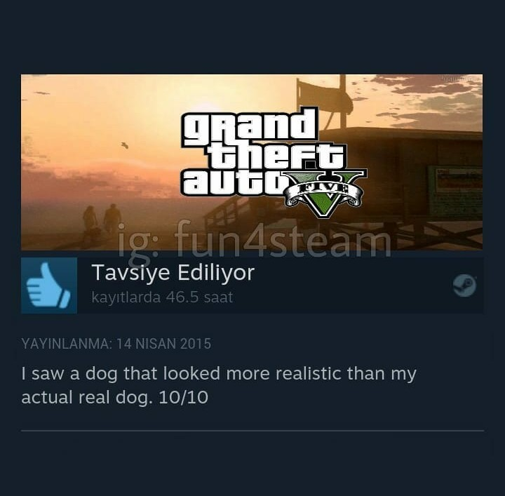 the best steam reviews