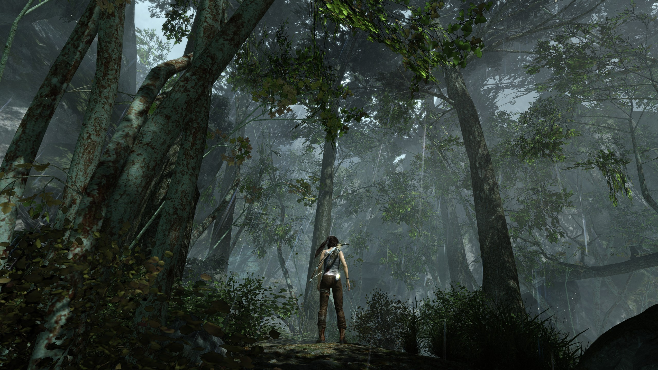 Tomb Raider Iphone X Wallpaper Tomb Raider Full Hd Wallpaper And Background Image
