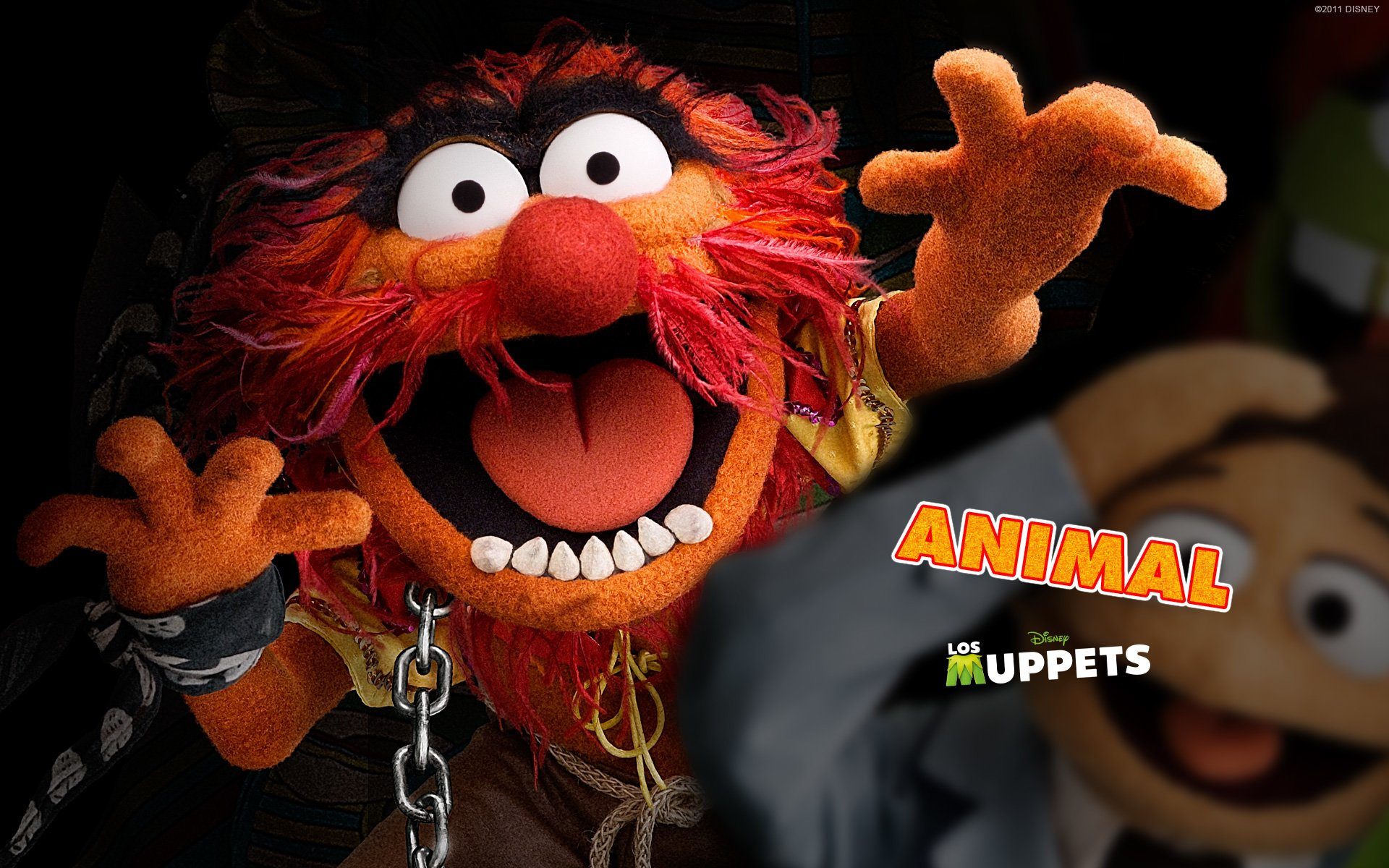 The Muppet Show Full HD Wallpaper And Background Image