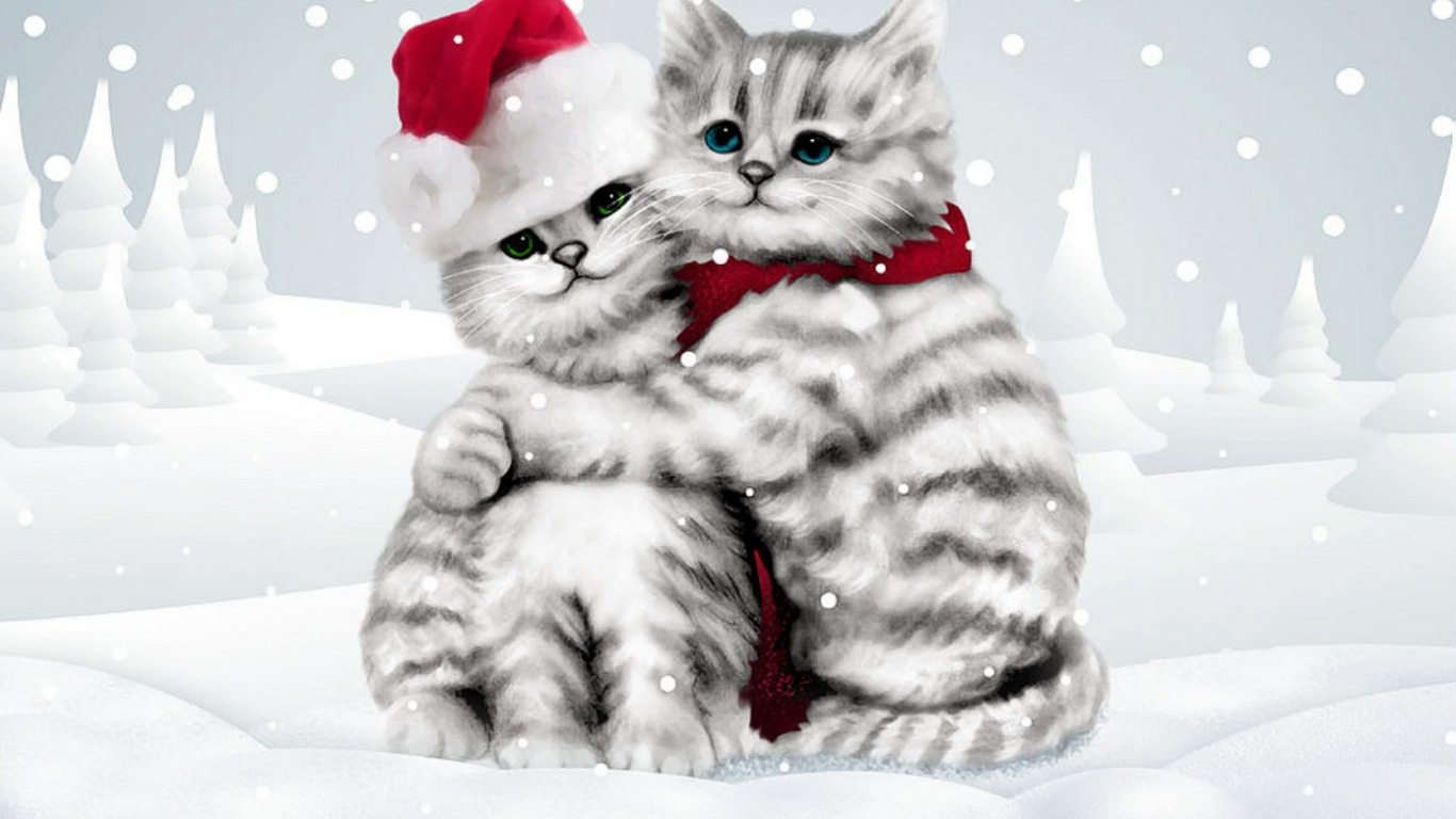 Cute Couple Hug Wallpaper For Mobile Winter Cats Wallpaper And Hintergrund 1366x768 Id