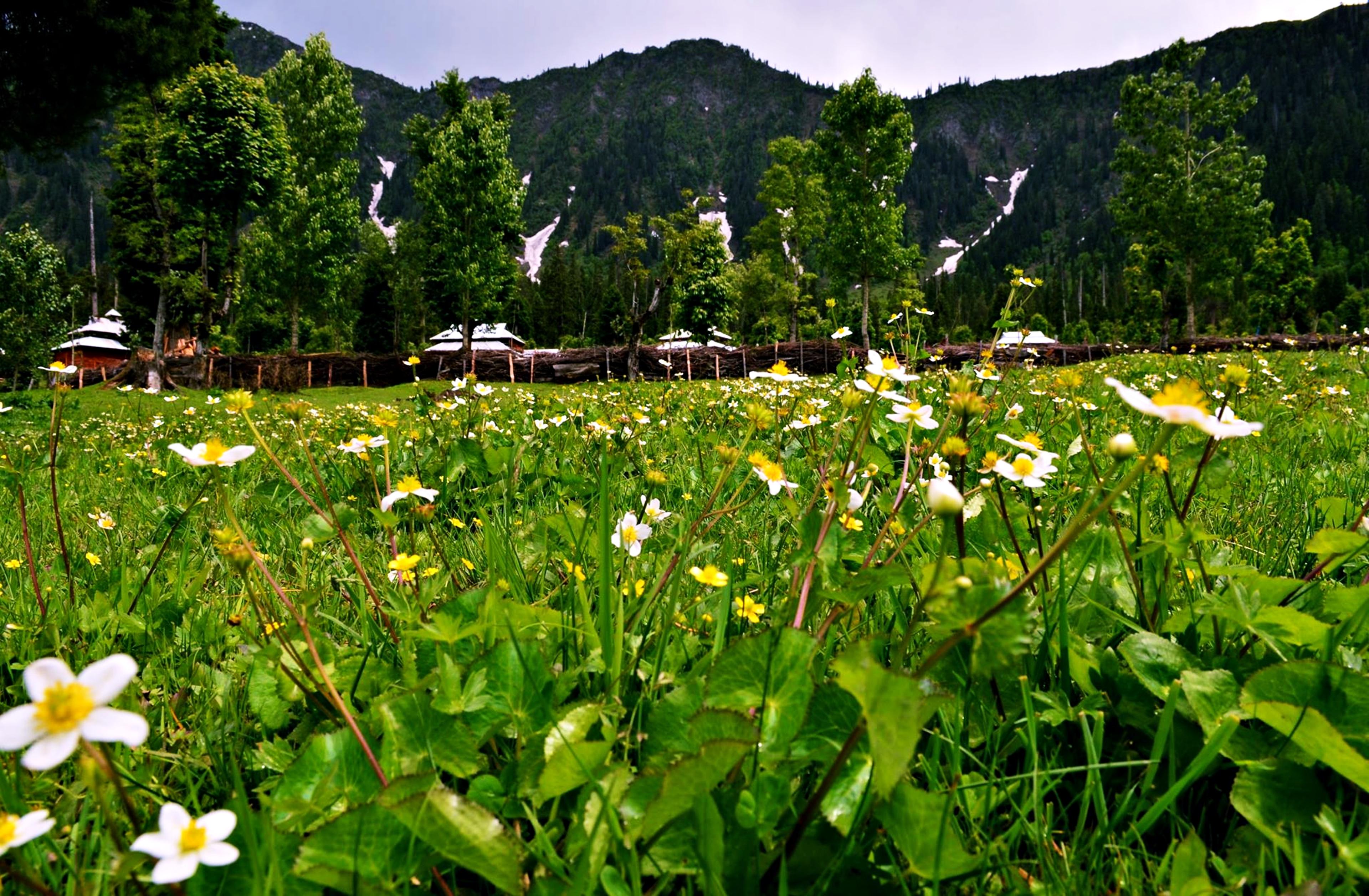kashmir landscape 4k ultra