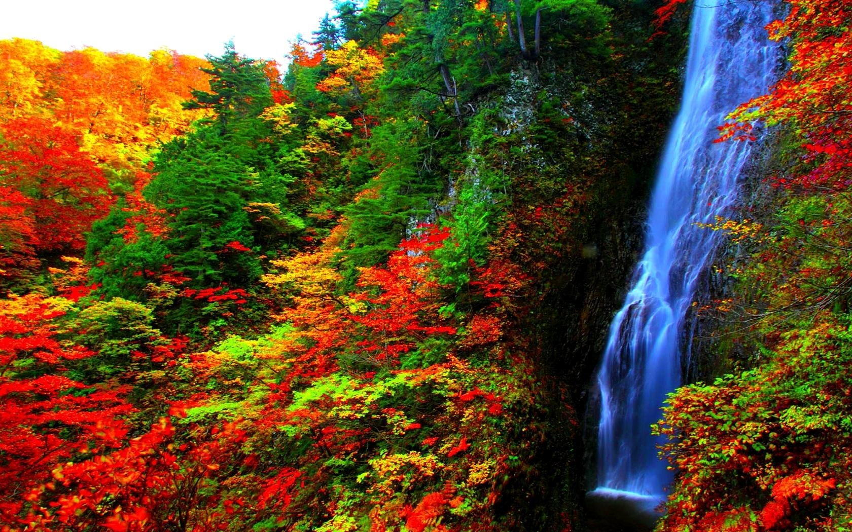 Cool Wallpapers Water Fall Waterfall In Autumn Forest Wallpaper And Background Image