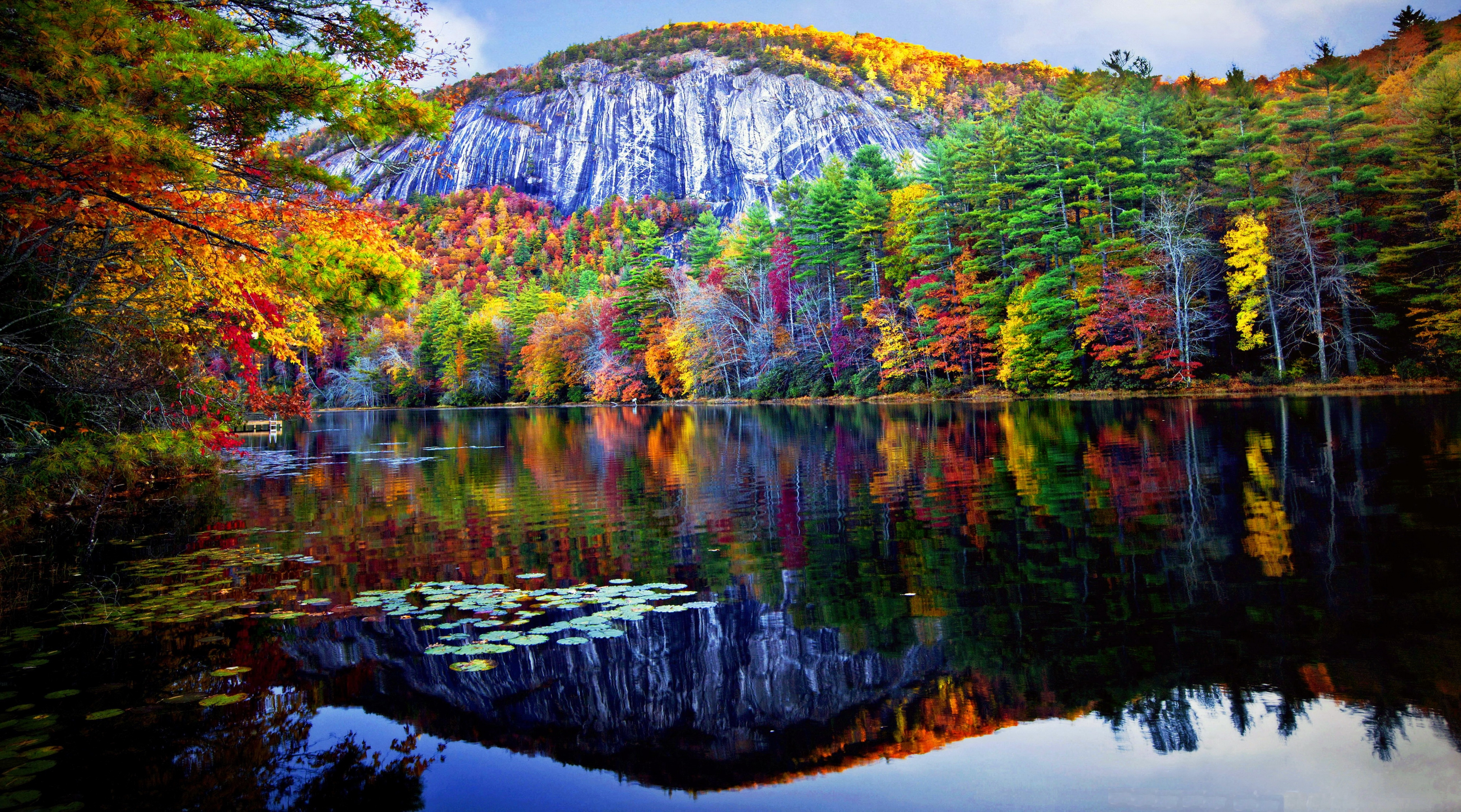 Fall Wallpaper 1080x1920 Autumn Forest Reflected In The Lake 4k Ultra Hd Wallpaper