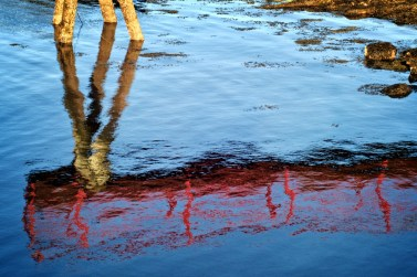 Red Dock Reflection Rockland Maine