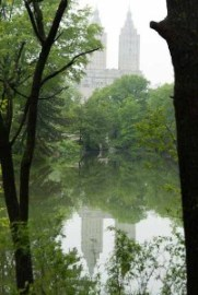 skyscraper, Central Park, NY, lake